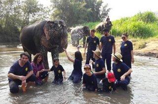 2 days eco trekking & Experience with Eddy Elephant
