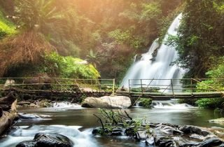 Inthanon national Park and trekking at Pha Dok Siew