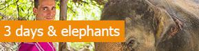 3 jours eco-trekking avec les Karen et decouverte des elephants